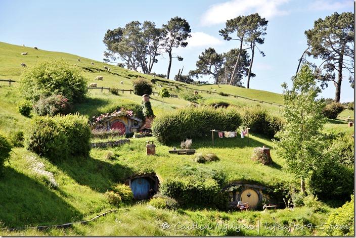 new zealand hobbiton life after 9to5. Black Bedroom Furniture Sets. Home Design Ideas