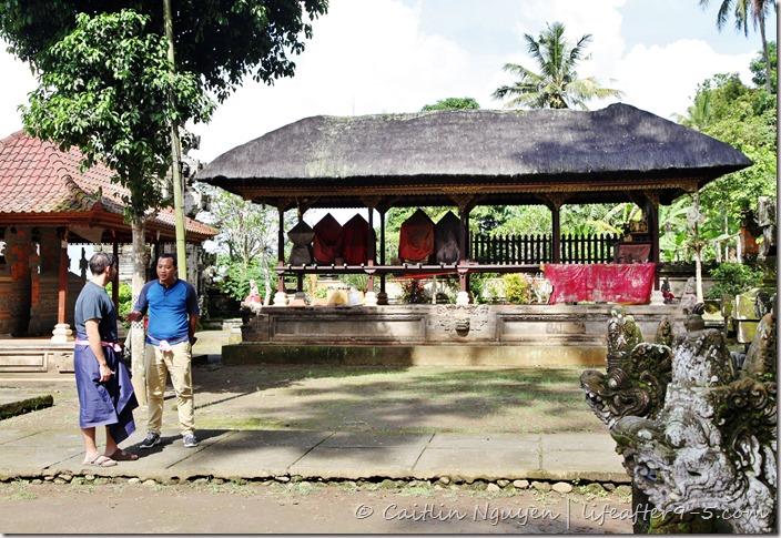 private driver Bali