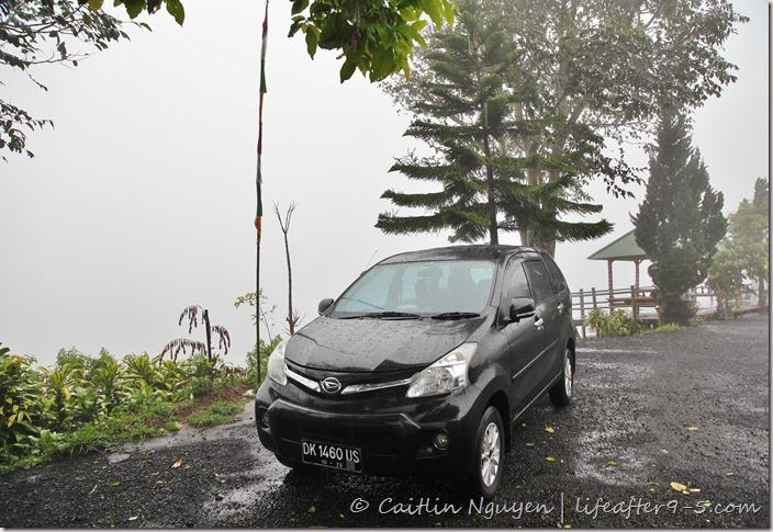 private car and driver Bali