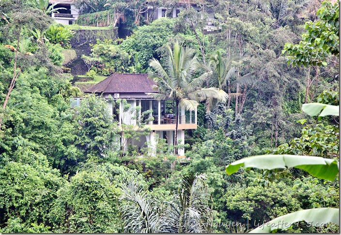 Jungle View Villa Ubud