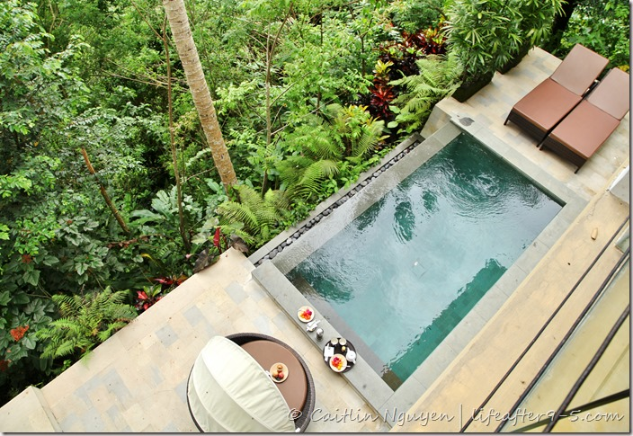 Jungle View Villa Ubud Pool