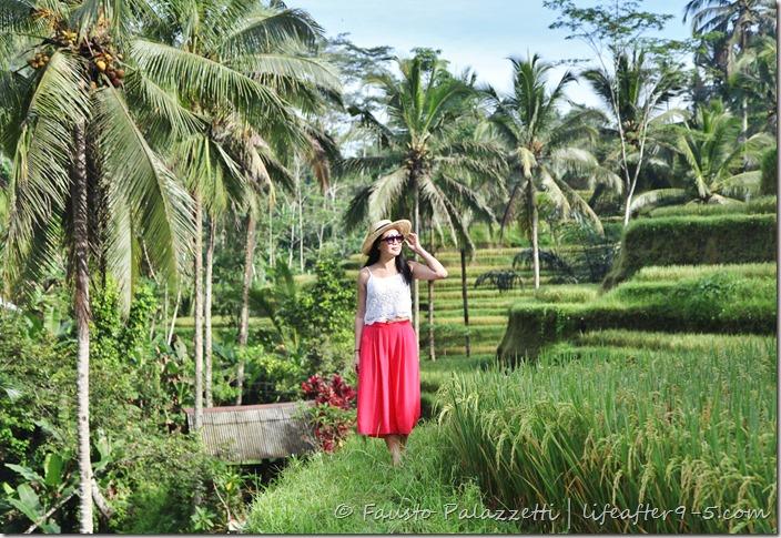 Bali - Tegalalang Rice Terrace