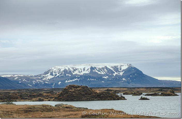 View of Myvatn lake with snow capped caldera in background