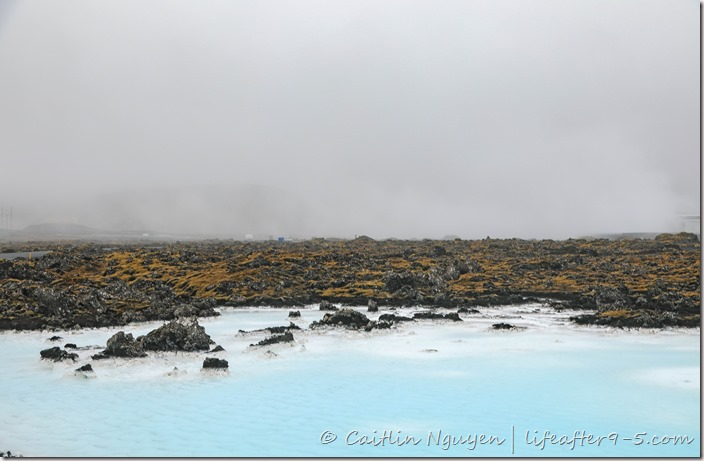 Icy blue water of Blue Lagoon contrasting against mossy lava field