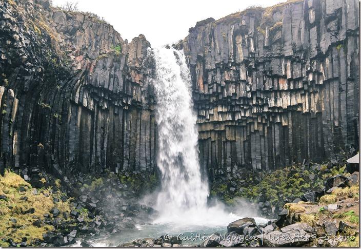 Tall black basalt columns surrounding Svartifoss