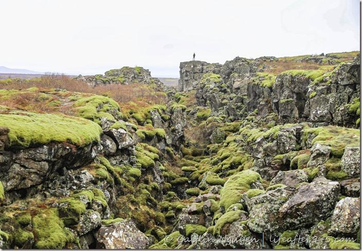 Rift valley at Þingvellir National Park