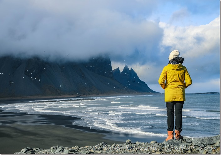 Woman in yellow jacket looking down on the black sand beach at Stokksnes