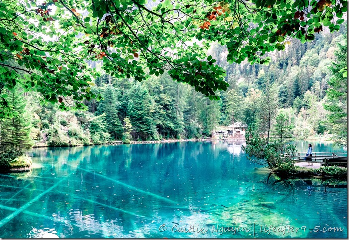 Admiring the view at Blausee